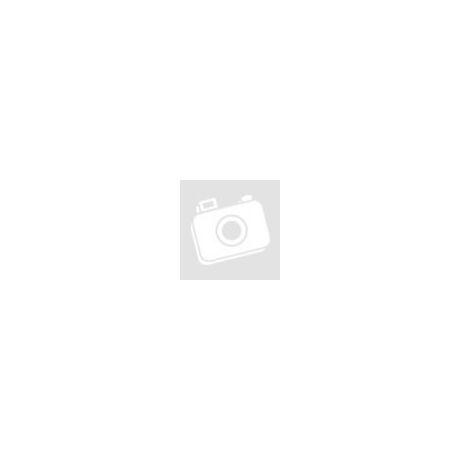 Bio extra szűz olívaolaj fekete fokhagymával, 250ml